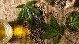 La marihuana, de droga ilegal a oportunidad de negocio para las grandes empresas