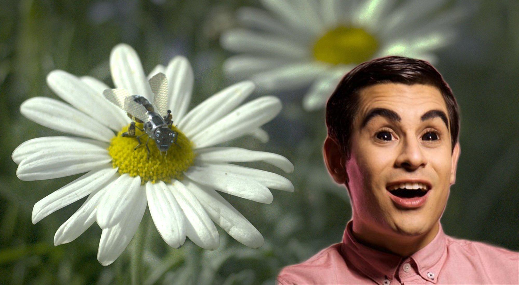 Sobre David Suárez, la censura, los límites del humor y las abejas de 'Black Mirror'