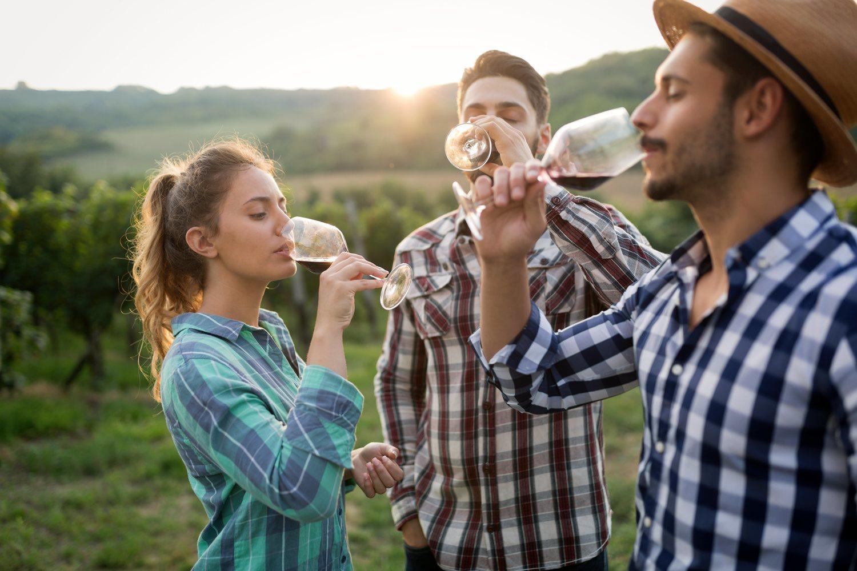 La cultura del vino y la cerveza está muy asentada en España