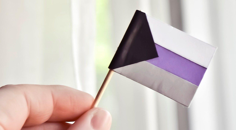 El colectivo demisexual tiene su propia bandera representativa.